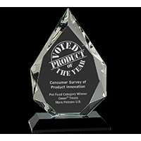 Custom/Personalized Corporate Awards